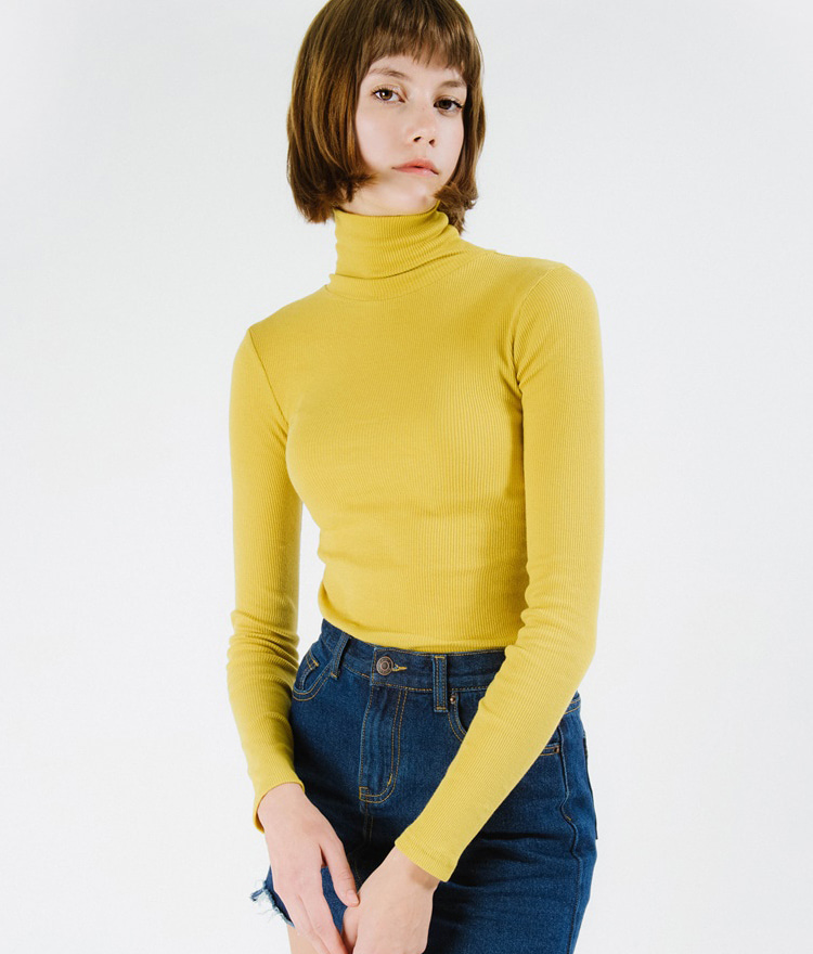 Turtleneck Slim Fit Ribbed Top