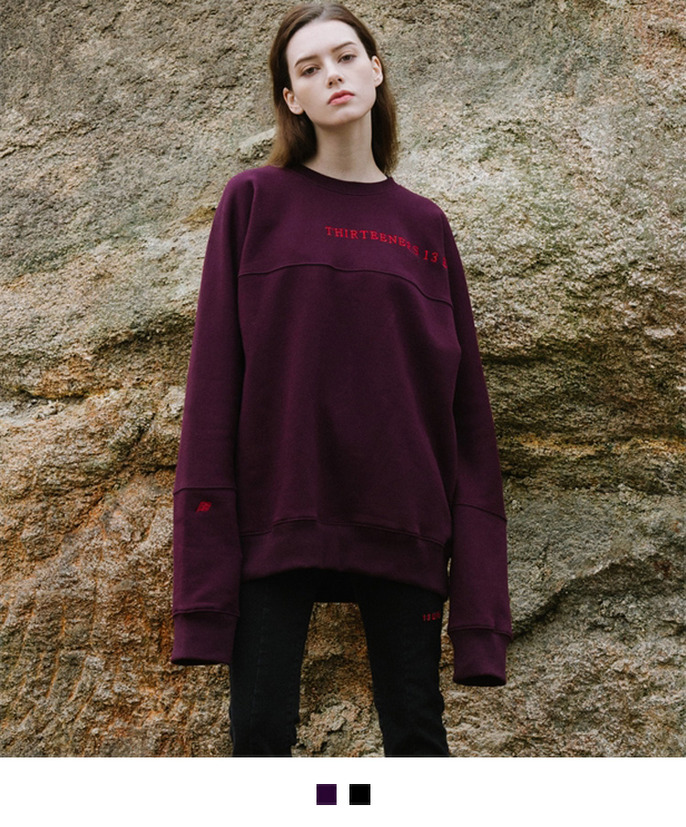 Embroidered Accent Oversized Sweatshirt